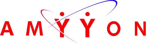 Logo Amyyon
