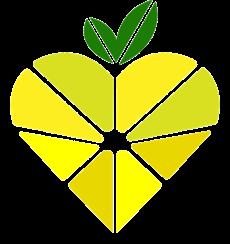 Lemon Care B.V.