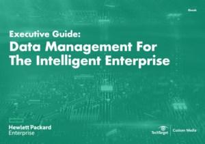 Handleiding: Data management voor intelligente bedrijven