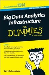 Big Data Analytics Infrastructure for Dummies