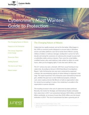 Cybercrime's Most Wanted: Guide to Protection