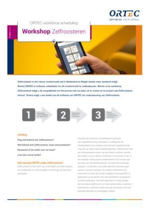 ORTEC Workforce Scheduling: Workshop Zelfroosteren