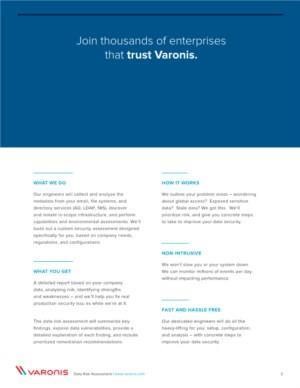Data Risk Assessment Overview 2020