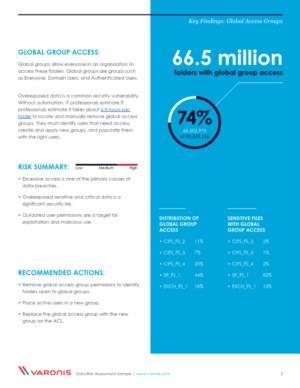 Data Risk Assessment - sample report