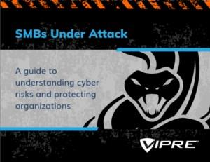 A guide to understanding cyber risks and protecting organizations