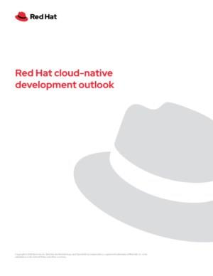 De 5 belangrijkste bevindingen omtrent Cloud-native development